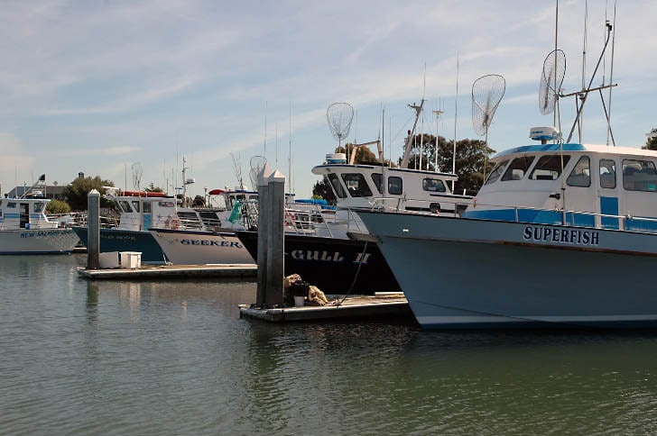Fleet at Emeryville Sportfishing