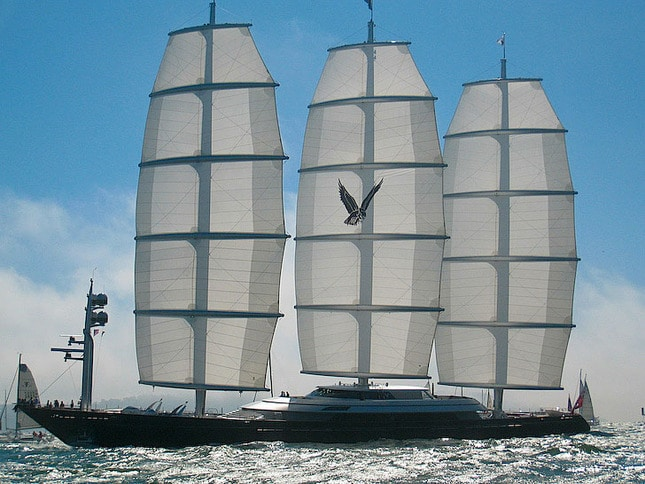 Full View of Maltese Falcon