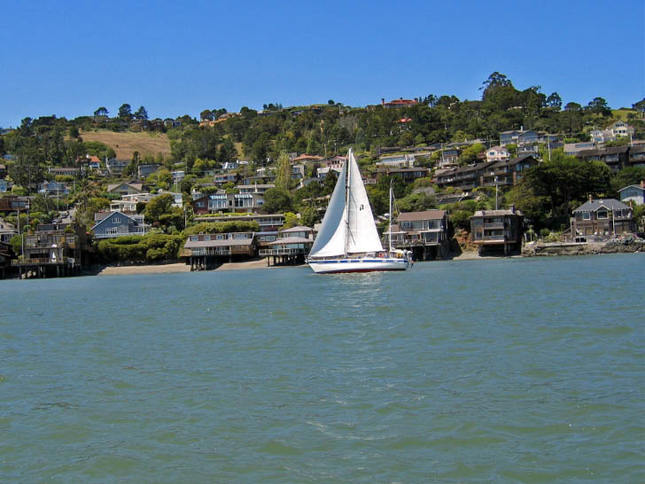 In the Tiburon Mud