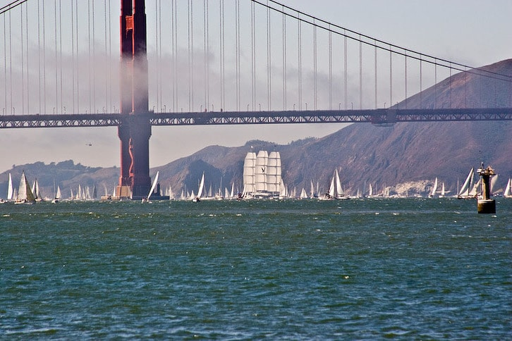 Maltese Falcon Under the Golden Gate