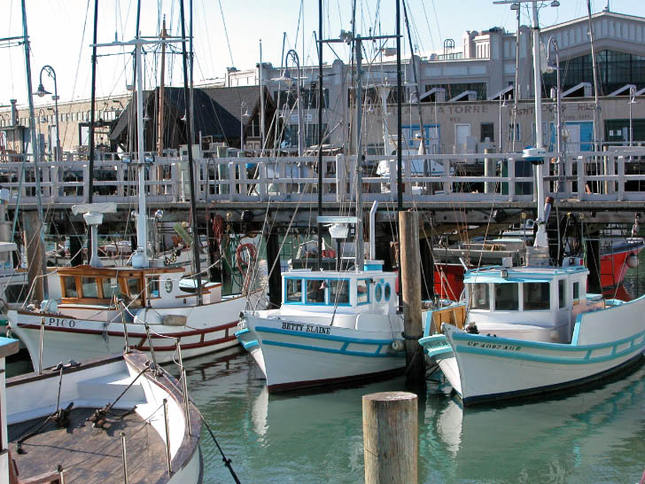 Monterey Fishing Boats at Fisherman's Wharf