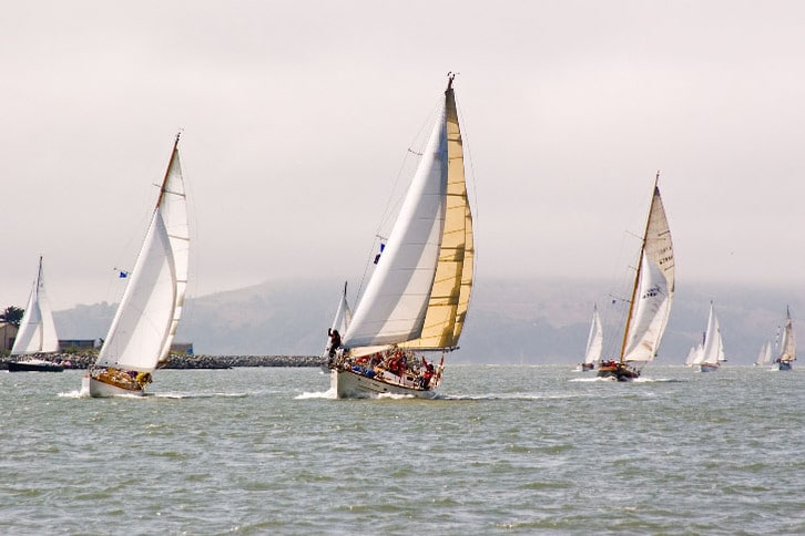 Multiple Sailboats Racing