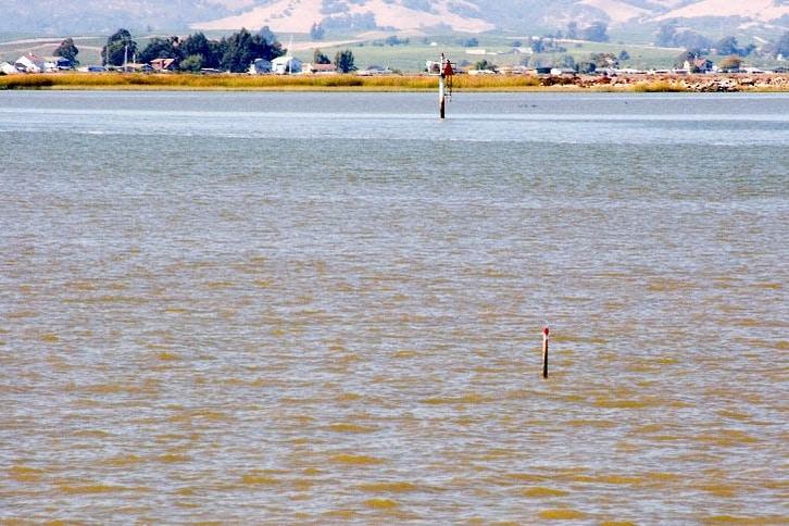 Private Hazard Marker in the Lower Napa River