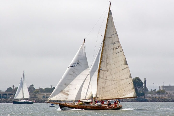 Rose of Sharon Sailboat