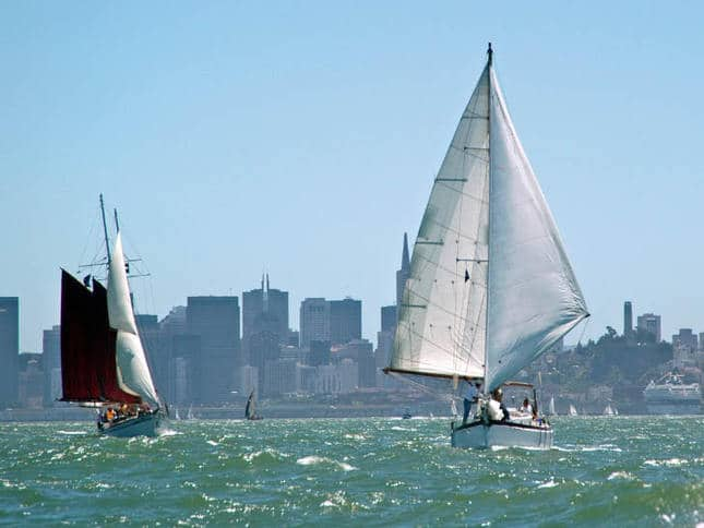 Running Wing-and-Wing in the Master Mariner's Regatta