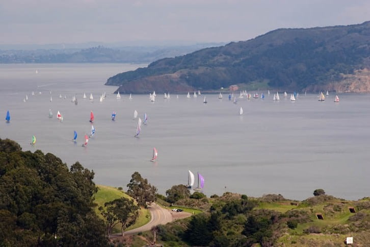 Sailboats Racing in Racoon Strait 2