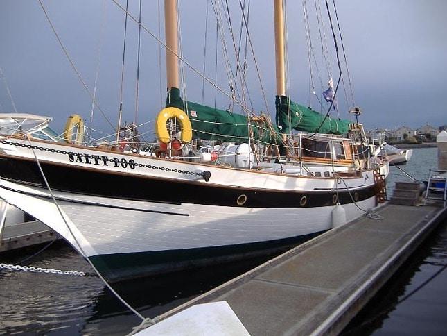 Salty Dog Sailboat 2