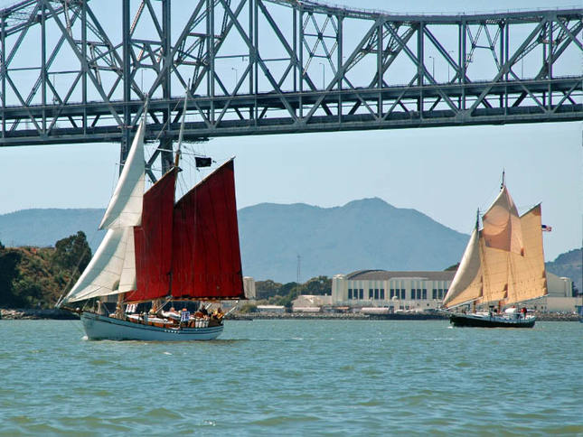 Schooners in the Master Mariner's Regatta
