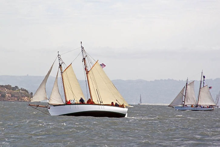 Smaller Schooners in the Master Mariner's Regatta