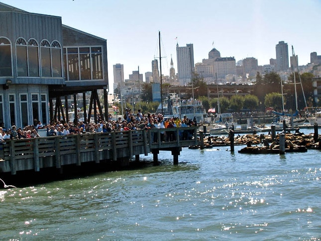 Tourists and Sea Lions at Pier 39