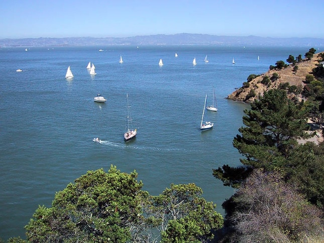 View East from Angel Island