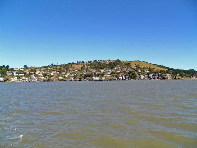 Waterfront Homes in Tiburon