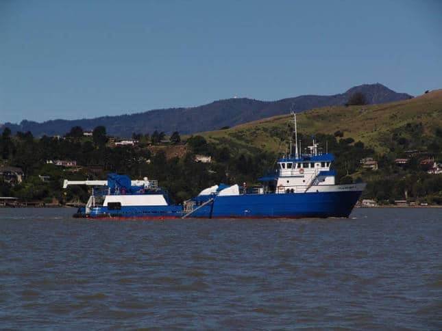 White and Blue Workboat